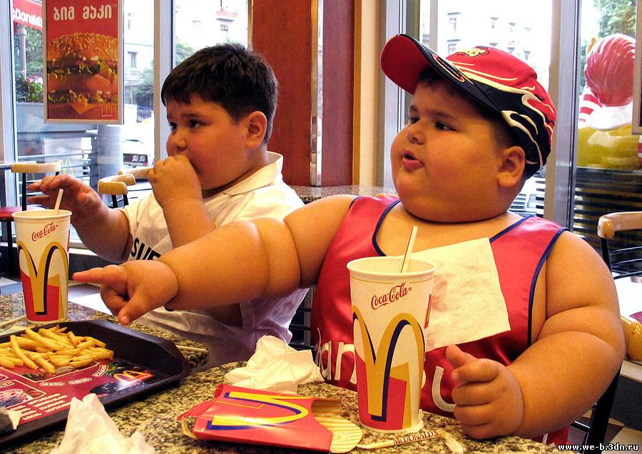 essays on fast food and children